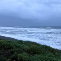 暗くなった海岸線の光を見ながら走る、