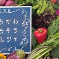 1月23日『いちかわごちそうマルシェ』は開催中止になりました@市川地方卸売市場