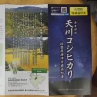 天川コシヒカリのリーフレット