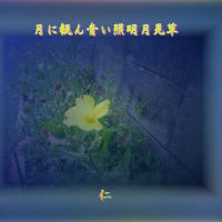『 月に観ん青い照明月見草 』筑紫風575交心ztp0101