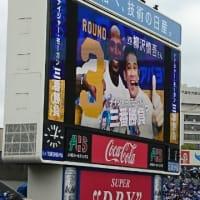 横浜スタジアム初参戦♪