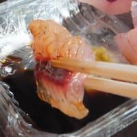 あの「飛び魚」も美味しい魚!