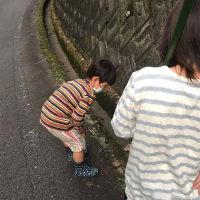 けーちん乳がんサバイバー闘病記録(8クール・21日目)2020/9/23
