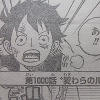 スーパーサイヤ人に覚醒する直前の孫悟空を彷彿 ~ ワンピース 1000話 ~