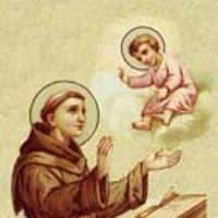 友人の再就職 そして One for all,All for one。・・・『聖アントニオ(バトバ)司祭教会博士』