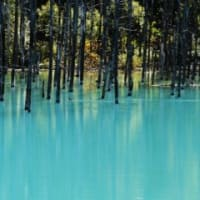 青い池は白い池