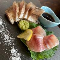程よく脂がのったカマスのお造り 海鮮丼屋 小田原 海舟 本店