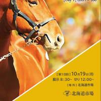 【オータムセール2020(Autumn Sale、1歳)】の「オンラインカタログ」が公開!