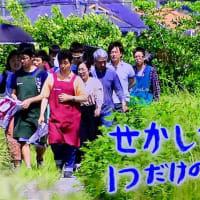 NHK「目撃!にっぽん」