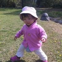 奈良の公園