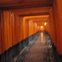 冬の京都①-吹雪との闘い~寺巡り
