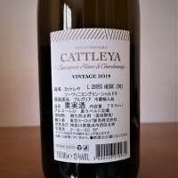 グルメ329食 『家のみワイン No.16』