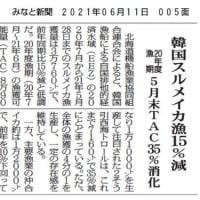 2021年06月11日 みなと新聞 韓国スルメイカ漁15%減