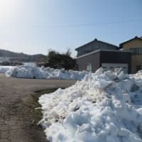 除雪されました・・・