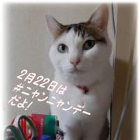 半生🍜青森十三湖「しじみラーメン」こだわり麺+しじみ&えのきでパワーupこれ絶品!