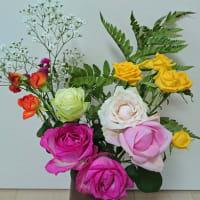 6月(1)の花