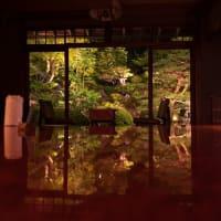 サツキと新緑の京都