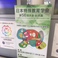 学会発表  日本特殊教育学会 第56回大会