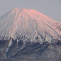 真っ白な富士