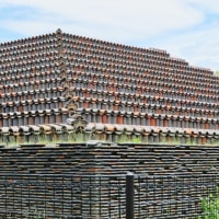 大阪にも「ピラミッド」がありました!・・・堺市 土塔 巨大クスノキ