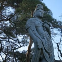 ブラ散歩~高幡不動尊初詣