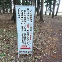 「たつのこ山」からの眺望に満足 龍ヶ岡公園周辺