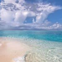 Pinterestで画像を見てうっとぉり~♪ 墓参りと犬と散歩と海