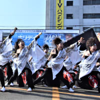YOSAKOI ソーラン祭り-11