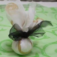 お茶の葉のその後(2)・・・まだ?てるてる坊主?に見えちゃうでしょうか。。。(2012-04-20)