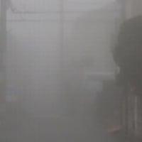 朝霧の世界