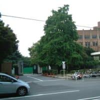 港区周辺の病院 - 東大医科研など