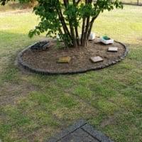 芝生の張り替え作業終了