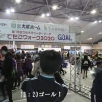 浦添ツーデーマーチ「てだこウォーク2020」2日目20km(沖縄県浦添市)