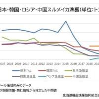 """""""またがり資源スルメイカ"""" 韓国 2021年度TAC 14%減"""