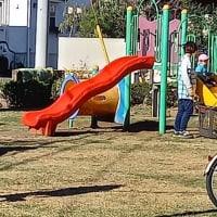 可愛いしぐさに癒された! 児童も手伝う公園清掃