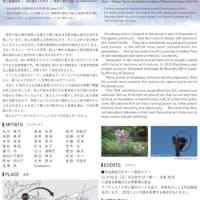 緑と道の美術展in黒川2020