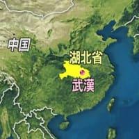 "【nhk news web】 NEW ;  1月23日 18時45分、""""武漢は自動車産業都市 約160の日本企業 500人程度の日本人"""""