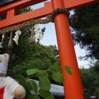 「上賀茂神社」で[葵祭」のお飾り「葵桂」づくり。NPO「葵プロジェクト」のみなさんといっしょに、