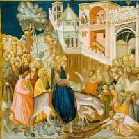 枝の主日の聖伝のミサのテキストを羅和対訳でご紹介いたします