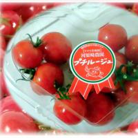 静岡からのお土産は…(^^♪輝くルビーのような深い紅色と、噛めばプチっとはじける甘さが好評の糖度9~12度 ミニトマト「プチルージュ」
