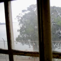 台風の季節。窓の対策は大丈夫ですか?