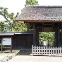初夏の鎌倉をひたすら歩く(1);鎌倉中央公園から大船経由で常楽寺へ