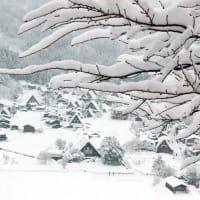 たのしい万葉集 あしひきの山に白きは我が宿に・・・