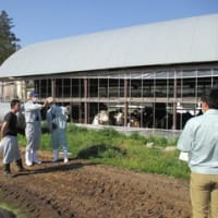 新規就農者のサポート訪問を行いました。