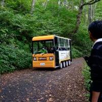 谷川岳 一ノ倉沢ハイキング(2)