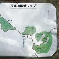 【長峰山】 花と虫 9月号 ~蝶の森へ行きましょう~