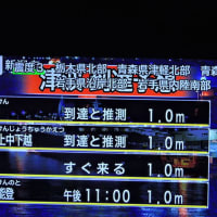 6/19 夕べの地震