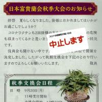 秋季大会中止のお知らせ、日本富貴蘭會