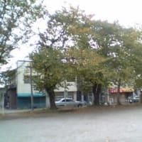 北海道劇場・1
