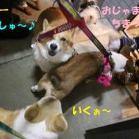 ラーメン100円